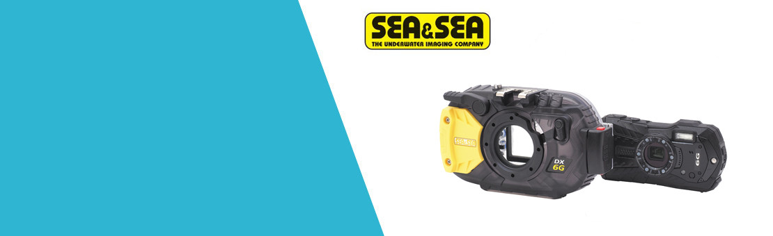 SEA&SEA DX-6G